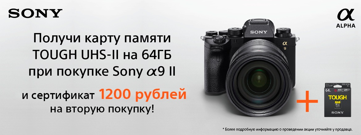 Sony ILCE-9M2