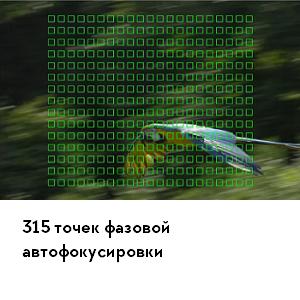 rx10m4-lens