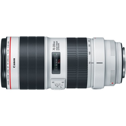 Canon EF 70-200mm f/2.8L IS III USM- фото3